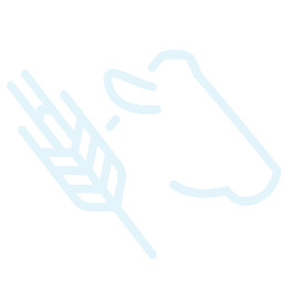 Aiguilles Delvo 20/15 (Boîte de 12)